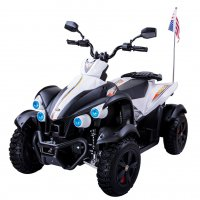 Детский спортивный электроквадроцикл Dongma-DMD Dongma ATV White 12V - DMD-268B-W