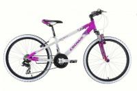 Велосипед Cronus BEST MATE 24 girl (2013)