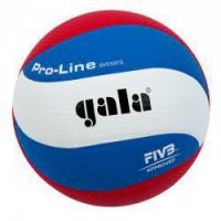 Волейбольный мяч Gala PRO-LINE BV5591S