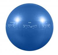 Мяч гимнастический GoFit профессиональный, 55 см