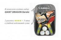 Набор для настольного тенниса Giant Dragon Karate (2 ракетки, 3 мяча)